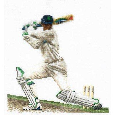 Cricket sur lin broderie en point compté - Thea Gouverneur
