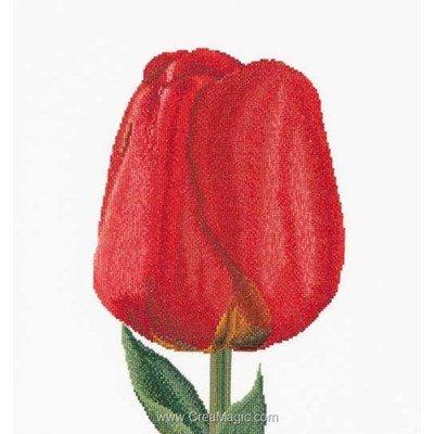Kit point de croix red darwin hybrid tulip sur lin - Thea Gouverneur