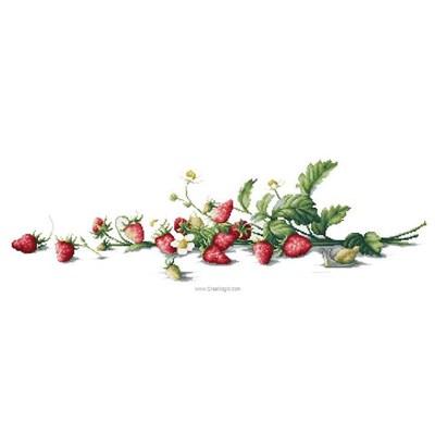 Branche de fraises broderie au point de croix point compté - Luca-S