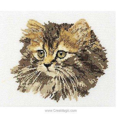Broderie au point compté chat angora brun sur lin de Thea Gouverneur