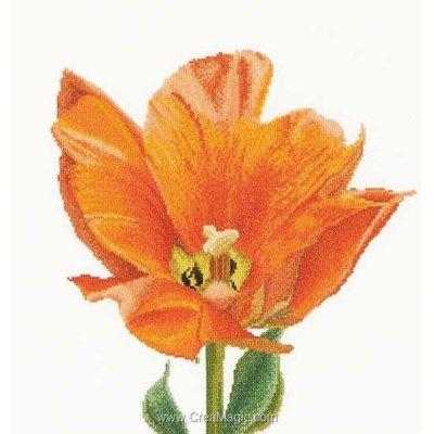 Kit Thea Gouverneur à broder au point de croix orange triumph tulip sur lin