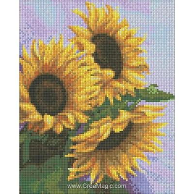 Kit broderie diamant 3 sunflowers de Diamond Painting
