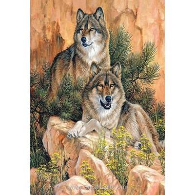 Kit broderie diamant couple de loups de Diamond Painting