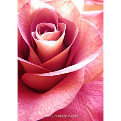 Broderie diamant Wizardi pink rose