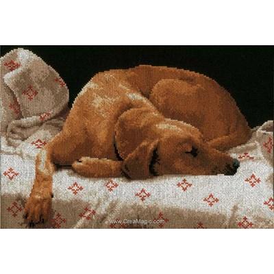 Modèle broderie point de croix Lanarte labrador endormi
