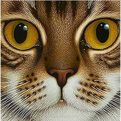 Broderie diamant Wizardi chat aux yeux cuivrés