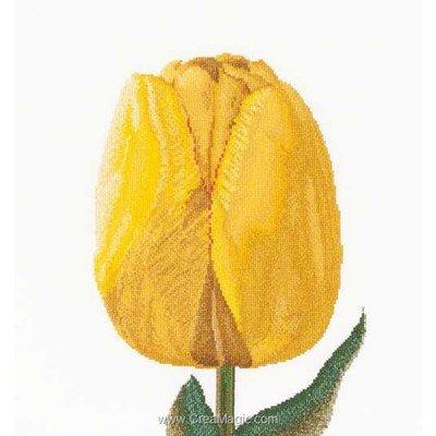 Broderie au point de croix compté yellow hybrid tulip sur aida - Thea Gouverneur