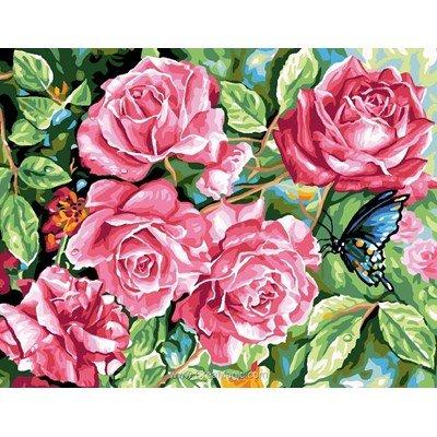 Rafael Angelot canevas la roseraie