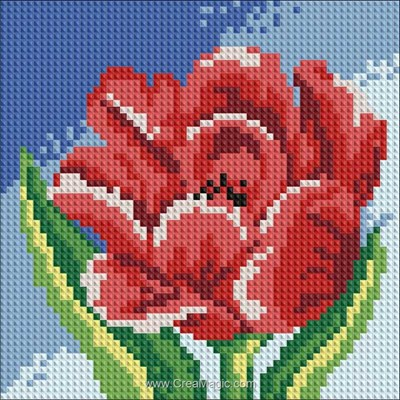Broderie diamant red tulip de Diamond Painting