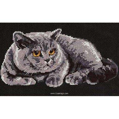 Modèle broderie au point de croix chat britannique - RIOLIS
