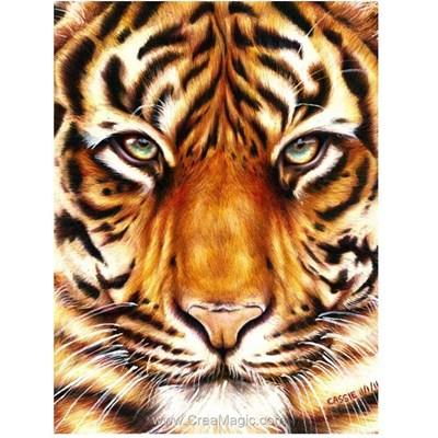 Kit broderie diamant Wizardi regard du tigre en chasse