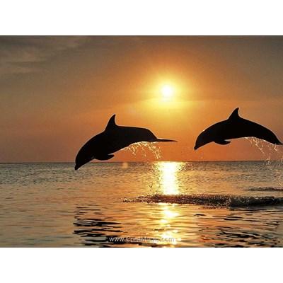 Kit broderie diamant jeux de dauphins au coucher de soleil - Diamond Painting