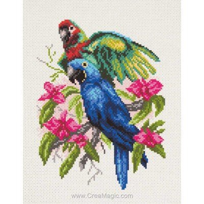 Kit broderie imprimée aida perroquets parrots de Collection d'art