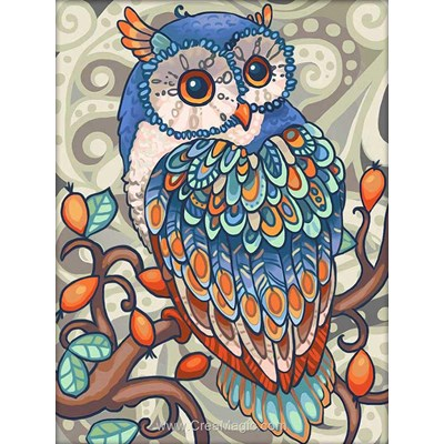 Broderie diamant owl de Diamond Painting