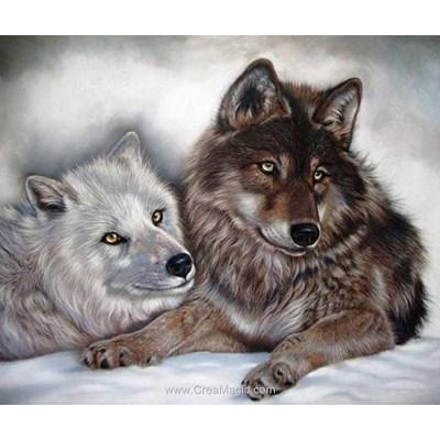 Broderie diamant Diamond Painting loups bicolor