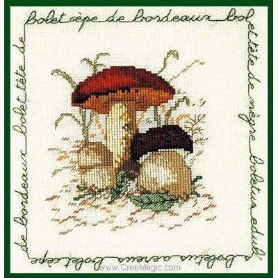 Broderie modele point de croix champignon - bolet cèpe de bordeaux - Le Bonheur Des Dames