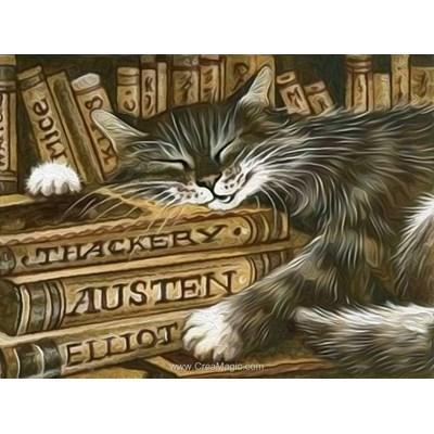 Kit broderie diamant librarian cat - Diamond Painting