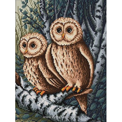 Broderie diamant Diamond Painting owls