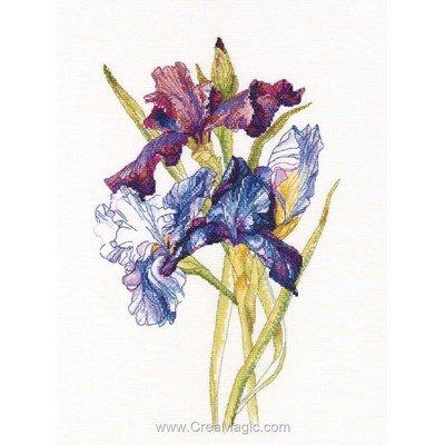 Broderie point de croix iris fleurs de RTO