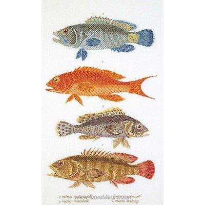 Les poissons sur lin broderie au point de croix point compté - Thea Gouverneur