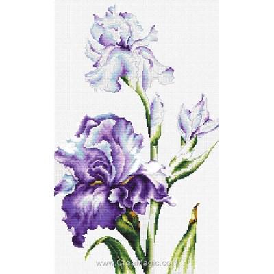 Iris violettes point de croix compté - Luca-S