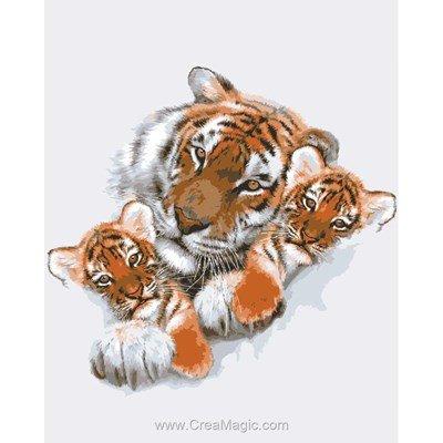 Portrait d'un tigre canevas - Collection d'art