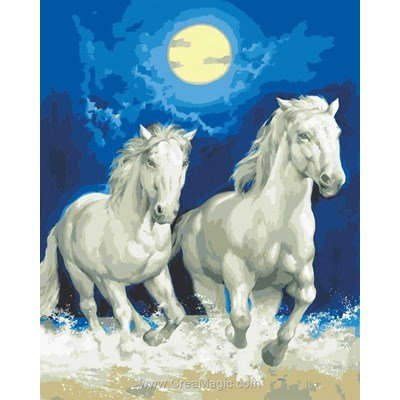 Chevaux blancs au clair de lune canevas de Collection d'art