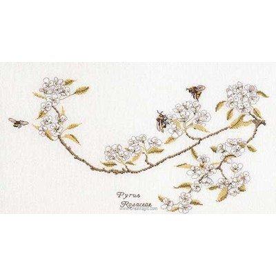 Pear blossom sur lin kit broderie point compté - Thea Gouverneur