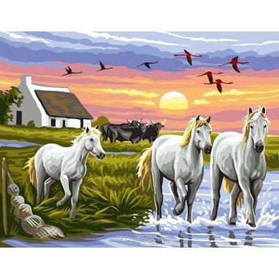 Les chevaux de camargue canevas - Rafael Angelot