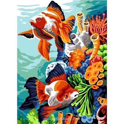 SEG canevas fonds marins colorés