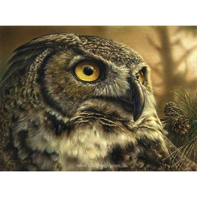 Kit broderie diamant owl - Diamond Painting