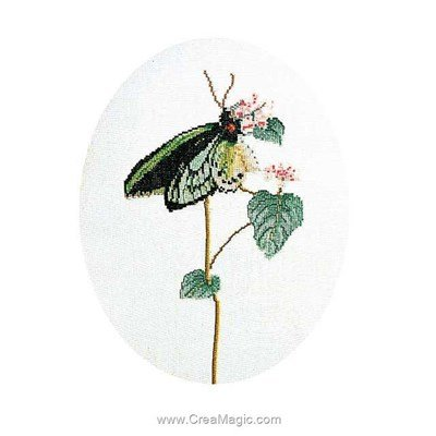 Kit Thea Gouverneur butterfly green sur lin