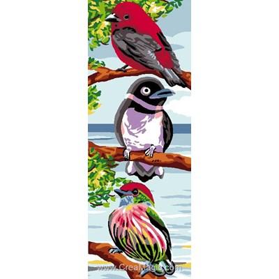 Luc Création canevas oiseaux de l'arc en ciel