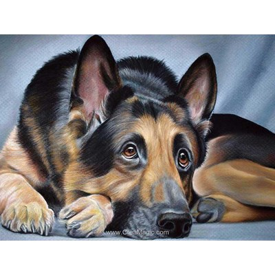 Kit broderie diamant Diamond Painting chien de berger