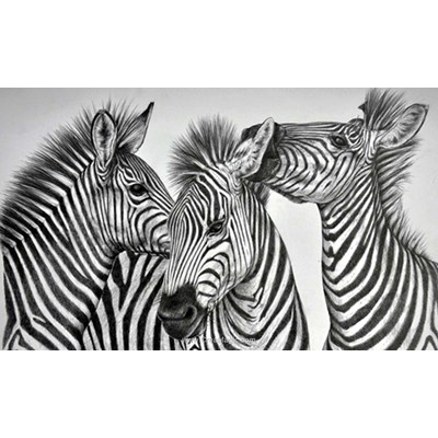 Kit broderie diamant Diamond Painting zebras