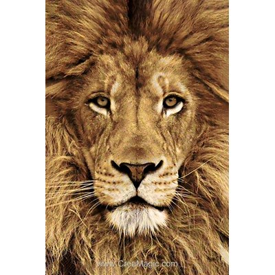 Kit broderie diamant Wizardi lion