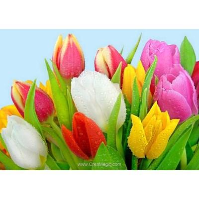 Kit broderie diamant rosée sur les tulipes de Collection d'art
