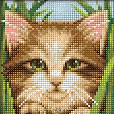 Kit broderie diamant Diamond Painting green-eye cat