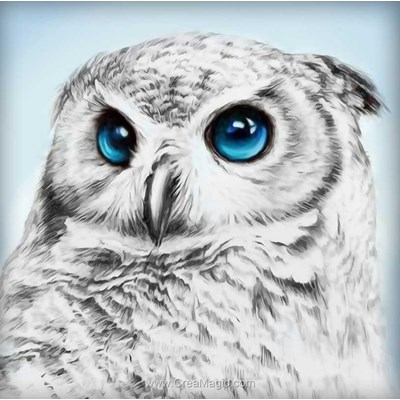 Kit broderie diamant owl sight de Diamond Painting