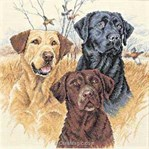 broderie au point de croix Great Hungting Dogs - Dimensions