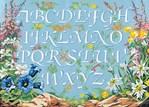 Canevas Abécédaire fleurs de montagne - SEG