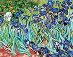 Canevas Les iris d'après Van Gogh - Royal Paris