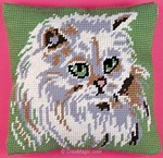 Chat blanc angora - Margot