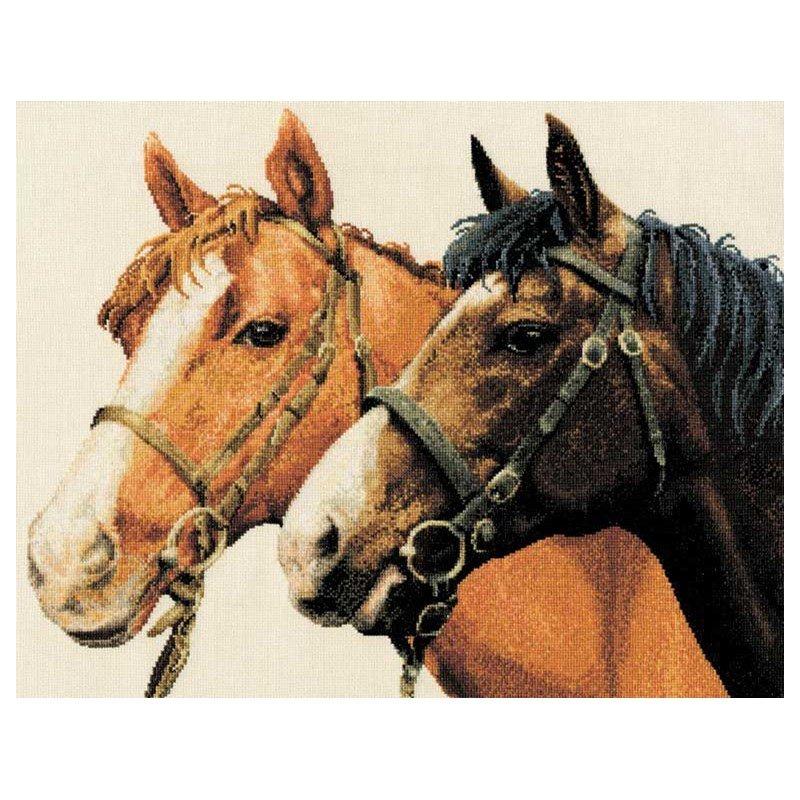 DMC broder en point de croix chevaux complices